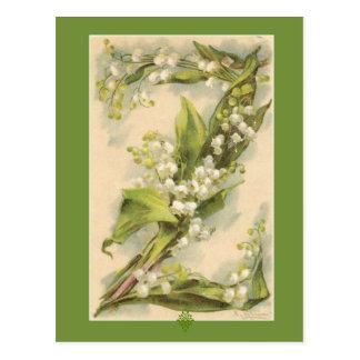 谷のキャサリンKleinの花のアルファベットZユリ ポストカード