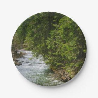 谷の山の川、自然、景色 ペーパープレート