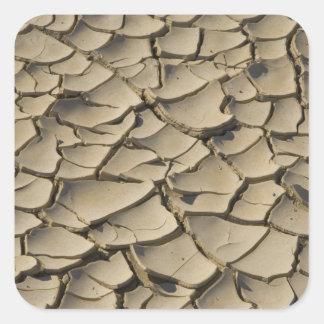 谷の床の割れた泥の形成の 正方形シール・ステッカー