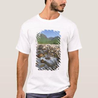 谷間Etiveの高地、スコットランド2 Tシャツ