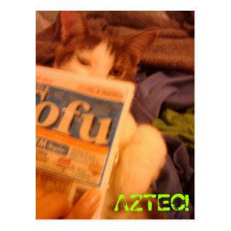 豆腐Kitteh ポストカード
