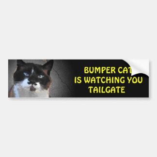 豊富な猫はテールゲートを見ています バンパーステッカー
