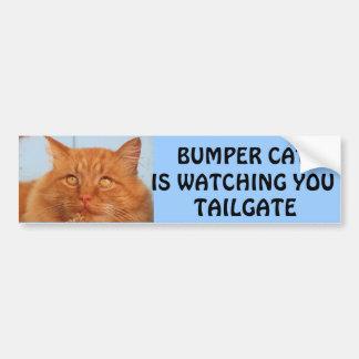 豊富な猫はテールゲート14見ています バンパーステッカー