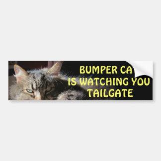 豊富な猫はテールゲート15を見ています バンパーステッカー