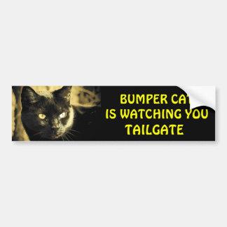 豊富な猫はテールゲート16を見ています バンパーステッカー