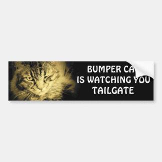 豊富な猫はテールゲート17見ています バンパーステッカー