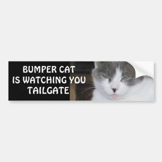 豊富な猫はテールゲート18を見ています バンパーステッカー