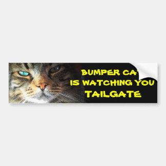 豊富な猫はテールゲート21を見ています バンパーステッカー