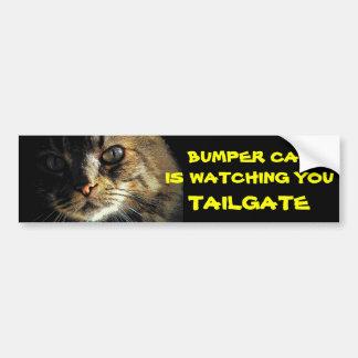 豊富な猫はテールゲート23を見ています バンパーステッカー