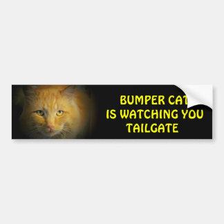 豊富な猫はテールゲート25を見ています バンパーステッカー