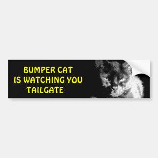 豊富な猫はテールゲート27を見ています バンパーステッカー