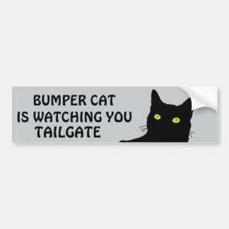 豊富な猫はテールゲート29を見ています バンパーステッカー