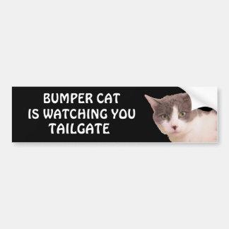豊富な猫はテールゲート33を見ています バンパーステッカー