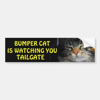 豊富な猫はテールゲート34を見ています バンパーステッカー