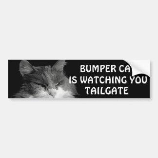豊富な猫はテールゲート36のミームを見ています バンパーステッカー
