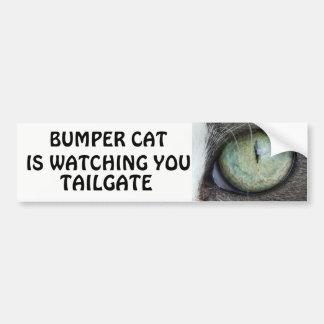 豊富な猫はテールゲート38を見ています バンパーステッカー