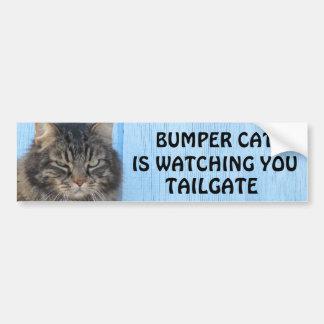 豊富な猫はテールゲート6のミームを見ています バンパーステッカー