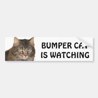 豊富な猫は見ています バンパーステッカー