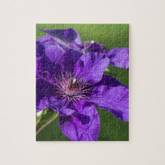 豊富な紫色クレマチスの花のマクロ ジグソーパズル
