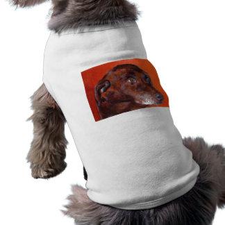 豚のようなHyattの失敗 ペット服