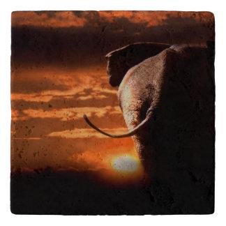 象との日没 トリベット