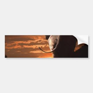 象との日没 バンパーステッカー