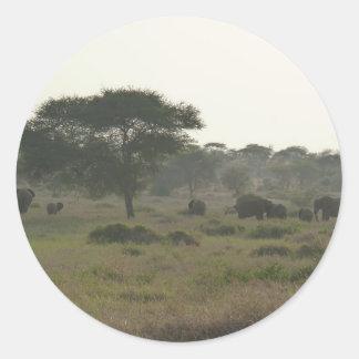象のステッカー、アフリカのサファリのコレクション ラウンドシール
