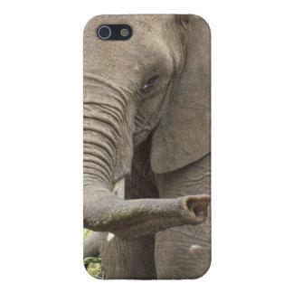 象のトランク iPhone 5 ケース