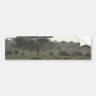 象のバンパーステッカーのアフリカのサファリのコレクション バンパーステッカー