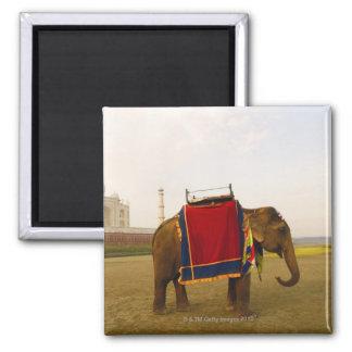 象の側面のプロフィール、タージ・マハル、インド マグネット