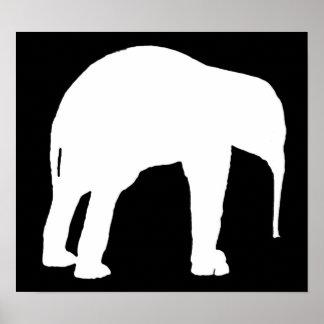 象の子牛の白いシルエット、黒い背景 ポスター