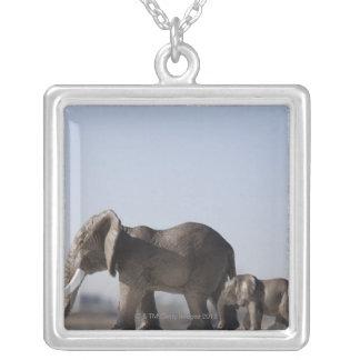 象の家族関係の青空 シルバープレートネックレス