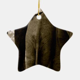 象の底 セラミックオーナメント