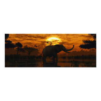 象の日没 フォトプリント