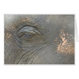 象の目 カード