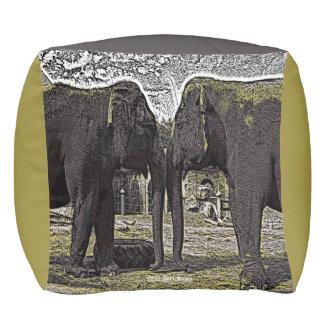 象の目 プーフ