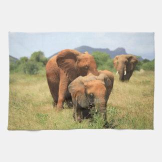 象の系列、ケニヤ キッチンタオル