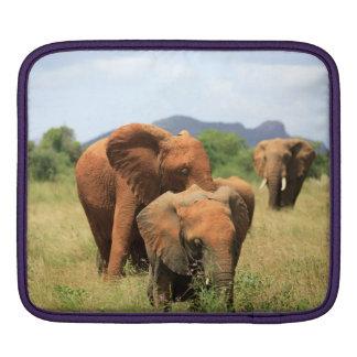 象の系列 iPadスリーブ