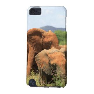 象の系列 iPod TOUCH 5G ケース