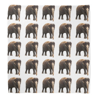 象 バンダナ