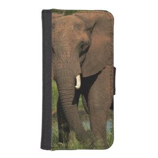象(Loxodonta Africana)、Hwangeの国民 iPhoneSE/5/5sウォレットケース