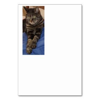 豪奢なデーブのテーブルカード カード