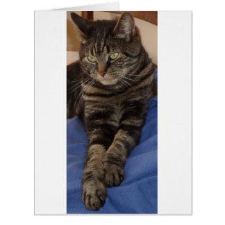 豪奢なデーブの大きい挨拶状 カード