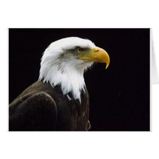 豪奢な鳥 カード