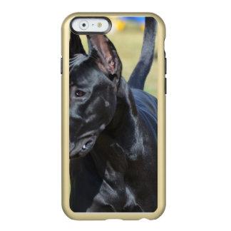 豪華で黒いグレートデーン INCIPIO FEATHER SHINE iPhone 6ケース