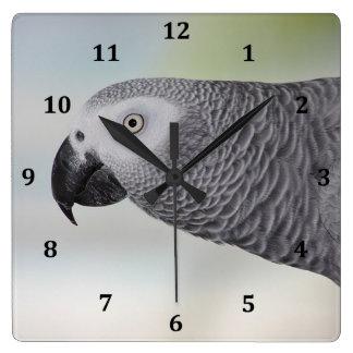 豪華なアフリカ灰色のオウム スクエア壁時計