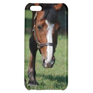 豪華なクォーター馬 iPhone 5C CASE