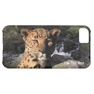 豪華なヒョウの美しい滝の背景 iPhone5Cケース
