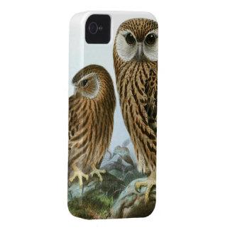 豪華なフクロウの目 Case-Mate iPhone 4 ケース