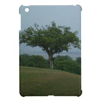 豪華な木のiPad Miniケース iPad Miniカバー